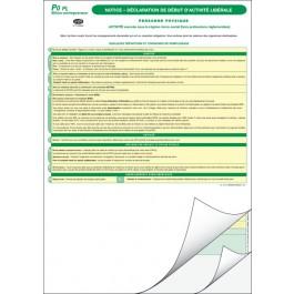 P1 - Déclaration de création d'activité